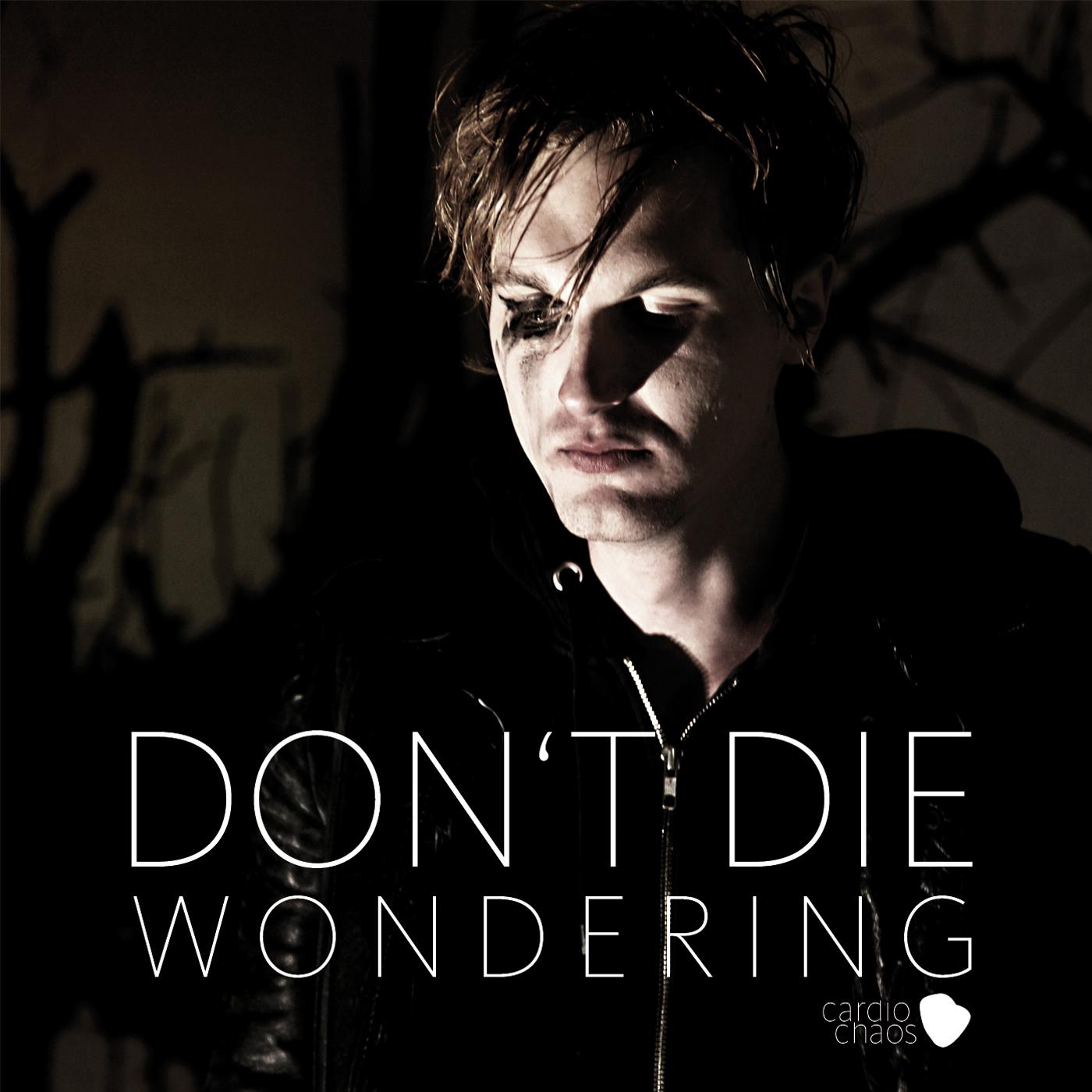 Don't Die Wondering Single